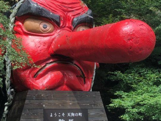 【写真部】京都で合宿を行いました!
